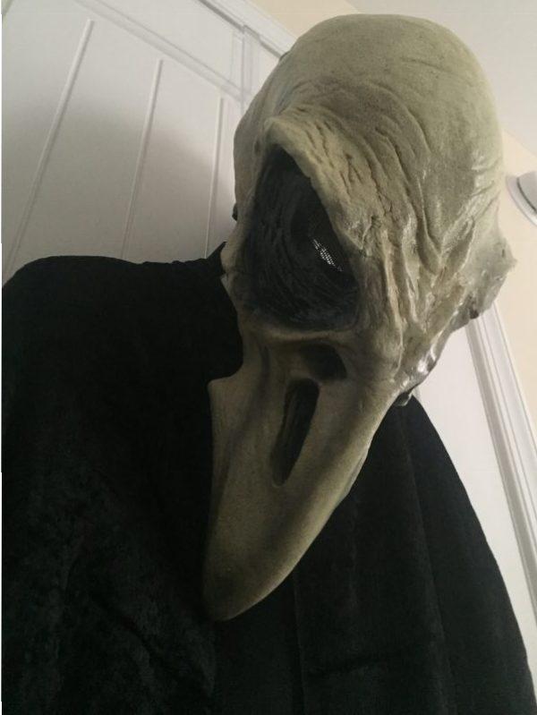 crow mask costume