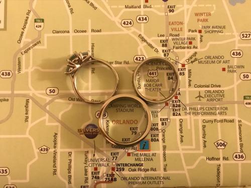 wedding rings hidden mickey