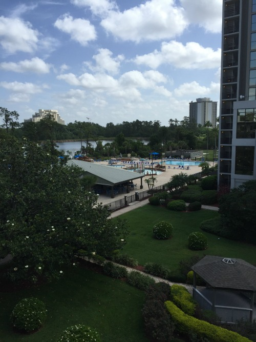 wyndham garden lake buena vista disney resort view