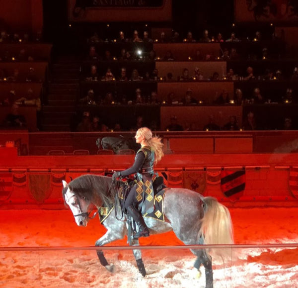 Medieval Times NJ horse trainer