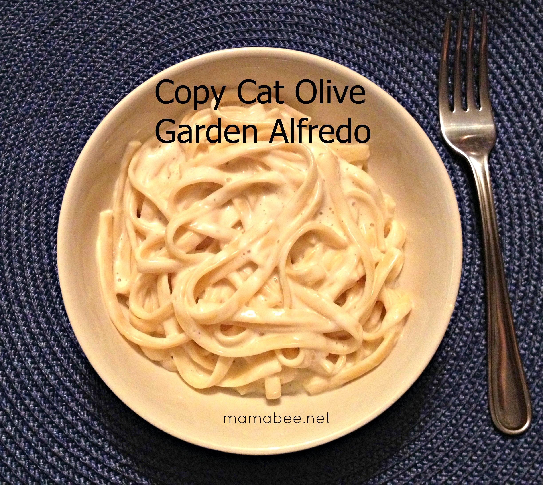 """copy cat Olive Garden Alfredo Pasta recipe"""